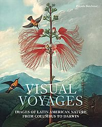 Visual Voyages