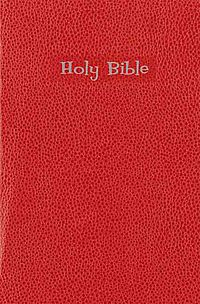 New International Reader's Gift & Award Bible Red