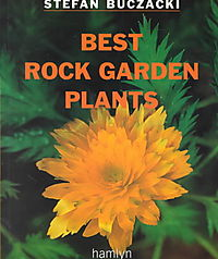 Best Rock Garden Plants