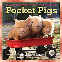 Pocket Pigs 2012 Calendar