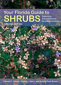 Your Florida Guide to Shrubs
