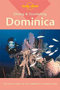 Diving and Snorkeling Dominica