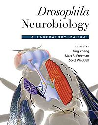 Drosophila Neurobiology