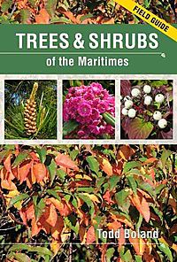 Trees & Shrubs of the Maritimes