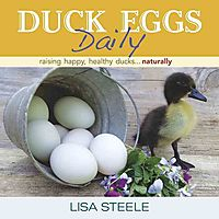 Duck Eggs Daily