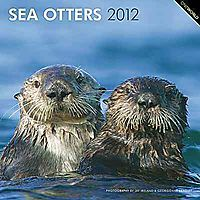 Sea Otters 2012 Calendar