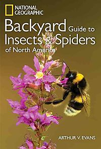 Backyard Guide to Insects and Spiders of North America