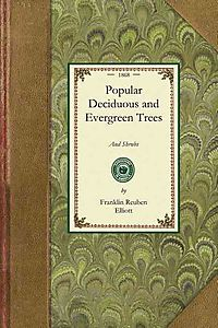 Popular Deciduous and Evergreen Trees and Shrubs