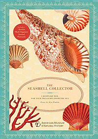 The Seashell Collector