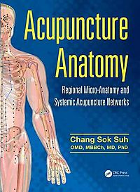 Acupuncture Anatomy