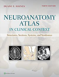 Neuroanatomy Atlas in Clinical Context