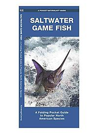 Saltwater Game Fish of North America